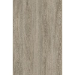 Vinilo Glue Down Grey Oak